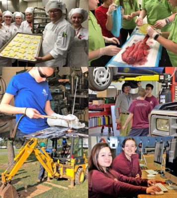 collage of student programs